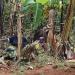 Frauen und Kinder im Dschungel