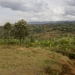 Landschaft der Frauen, Bezirk Walungu